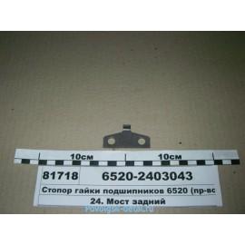 Стопор бугельной гайки (на 6520) 6520-2403043